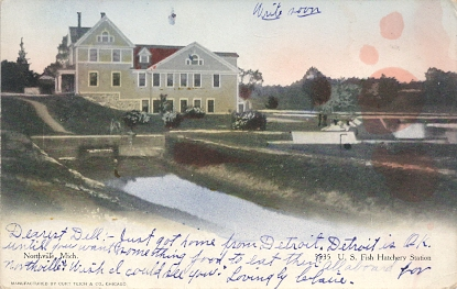 Antique american postcards michigan for Fish hatchery michigan